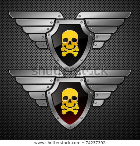 skull in the winged metallic shield stock photo © hunterx