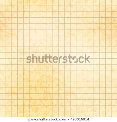 5 ミリメートル グリッド 古い紙 テクスチャ ストックフォト © Evgeny89