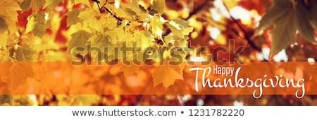 composite image of digital image of happy thanksgiving day text greeting stock photo © wavebreak_media