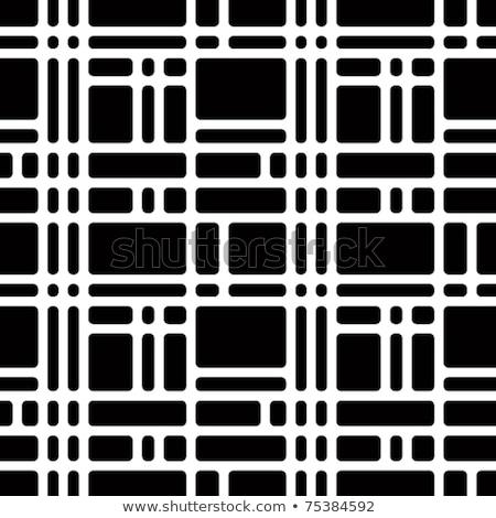 vektör · siyah · beyaz · geometrik · diyagonal · hatları - stok fotoğraf © creatorsclub