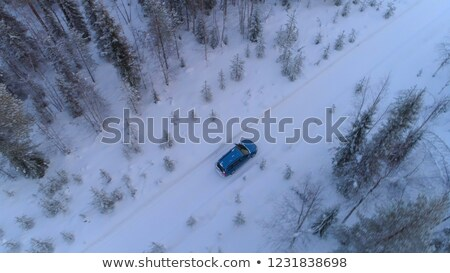 car in forest with sunbeams in winter landscape Stock photo © compuinfoto