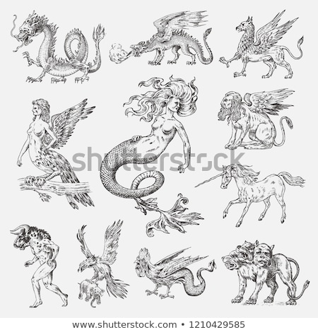 Fairy mythical creatures icons Stock photo © jossdiim