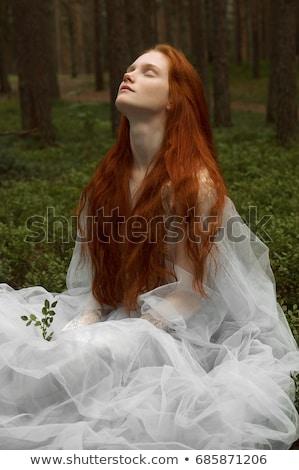 ロマンチックな · クローズアップ · 肖像 · 小さな · 赤毛 · 少女 - ストックフォト © lithian