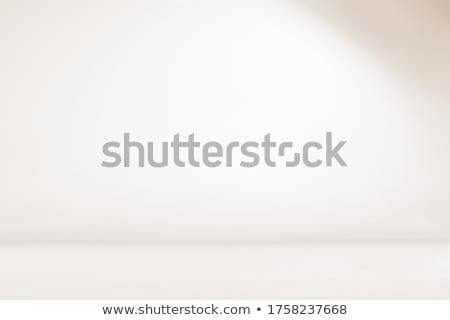 Photography Studio Seamless Background Stock photo © idesign