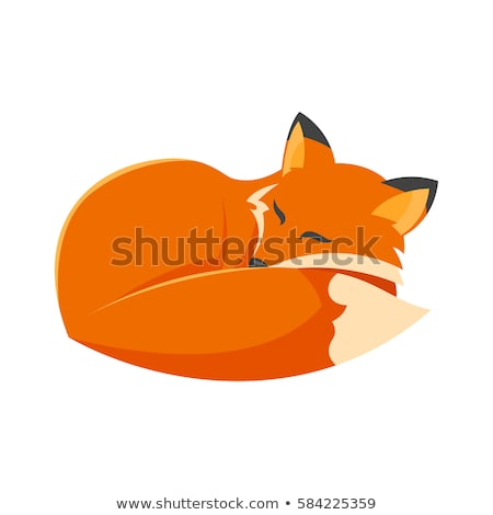 Vector Cartoon estilo ilustración dormir Fox Foto stock © curiosity