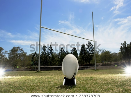 Rugby ball on the field with sky and clouds Stock photo © tish1