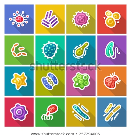 Amoeba Flat Icon Stock photo © ahasoft