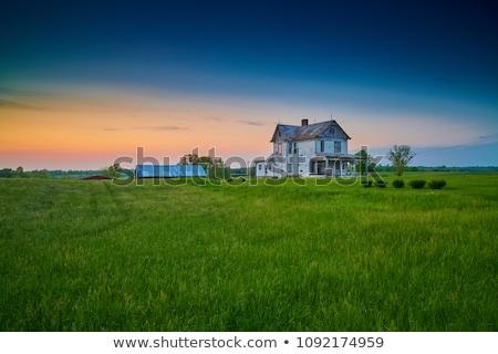 velho · windows · abandonado · casa · textura · edifício - foto stock © stefanoventuri