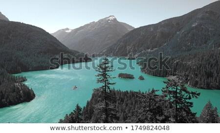 водопада сцена зеленый деревья Blue Sky иллюстрация Сток-фото © bluering