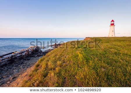 Jerome Point Lighthouse in Nova Scotia Stock photo © benkrut