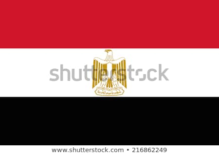 Egypt flag, vector illustration Stock photo © butenkow