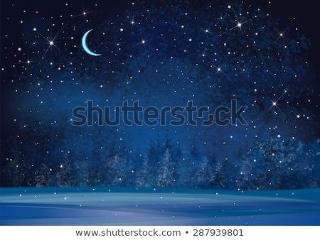 árboles · árbol · forestales · luna · azul - foto stock © freesoulproduction