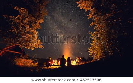 Arkadaşlar kamp ateşi gülen tatil erkek oturma Stok fotoğraf © IS2