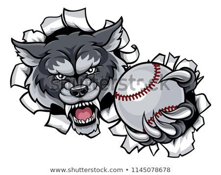 モンスター · オオカミ · マスコット · スポーツ · 文字 - ストックフォト © krisdog