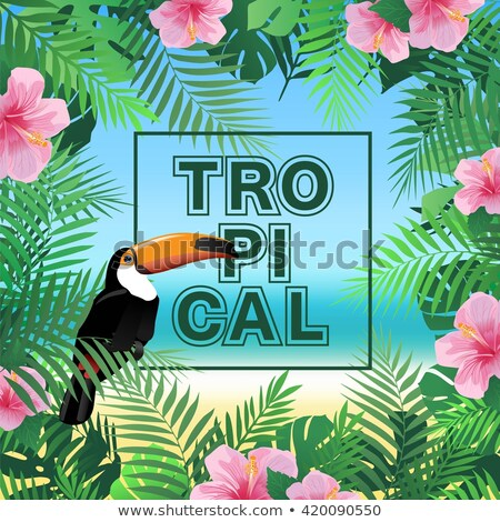 vector summer tropical beach party flyer design with toucan flower and typographic elements on exot stock photo © articular