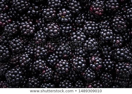 Blackberry texture background Stock photo © hraska