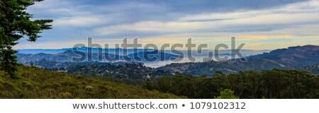 雲 カリフォルニア 米国 草 自然 ストックフォト © yhelfman