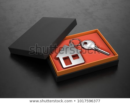 House loan concept Stock photo © jezper
