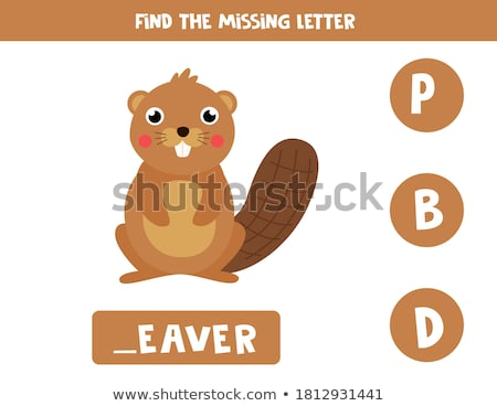 Spell english word beaver Stock photo © bluering