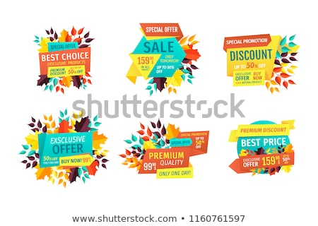 discount and sale logos set with autumn leaves stock photo © robuart