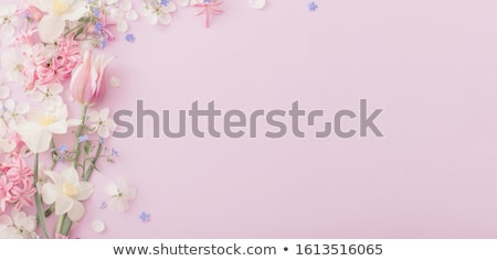 bouquet of tulips on the background flowers stock photo © ruslanshramko