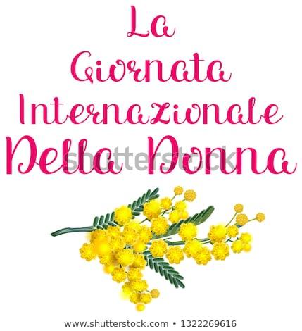 La Giornata internazionale della donna italia holiday yellow acacia mimosa. Womens day text translat Stock photo © orensila