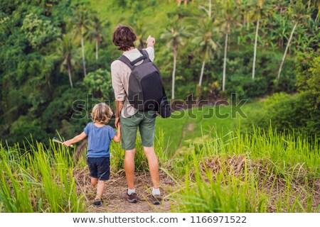 dad and son travelers are looking at beautiful of rice field among the dense jungle stock photo © galitskaya