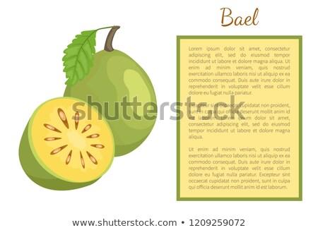 exotique · juteuse · fruits · vecteur · affiche · cadre - photo stock © robuart