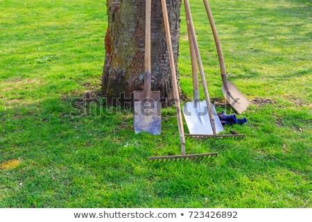 ogród · narzędzia · sylwetka · biały · eps · 10 - zdjęcia stock © loopall