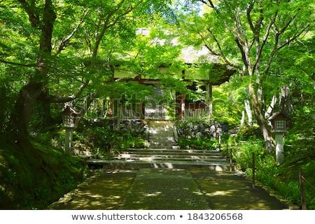 Temple kyoto Japon bambou forêt Photo stock © daboost