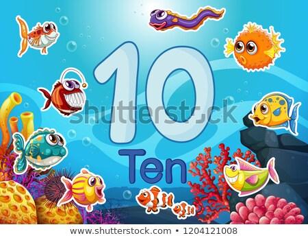 Ten diffrent underwater fish Stock photo © colematt