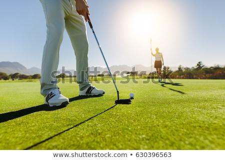 golfer · gat · vlag · vriend · bal - stockfoto © kzenon