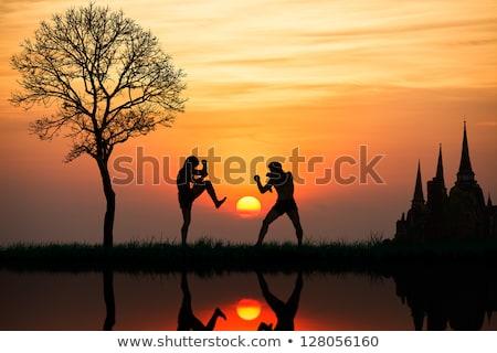 muay · thai · boksör · kadın · hazır · kadın · spor - stok fotoğraf © adrenalina