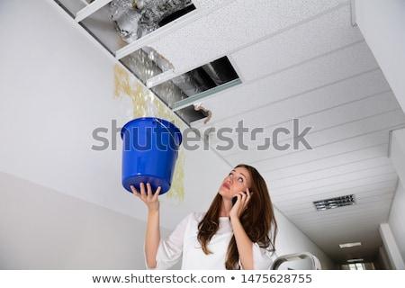 nő · hív · vízvezetékszerelő · víz · szivárgás · otthon - stock fotó © andreypopov