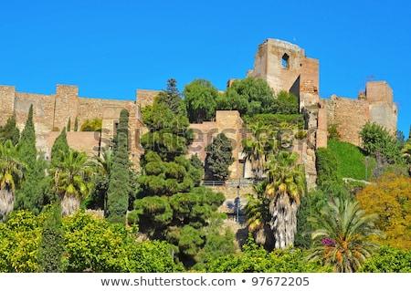 マラガ スペイン 要塞 アーチ 庭園 旅行 ストックフォト © borisb17
