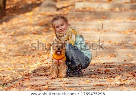 Ziemlich kleines Mädchen freundlich Lächeln süß Stock foto © Giulio_Fornasar