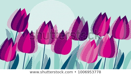 Foto stock: Rosa · tulipas · verde · flores · vetor