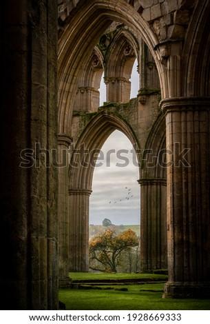 Ruins of famous Riveaulx Abbey Stock photo © CaptureLight
