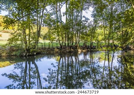 tükröződés · fák · folyó · naplemente · természet · háttér - stock fotó © meinzahn