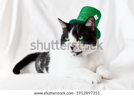 Saint Patrick's hat Stock photo © montego