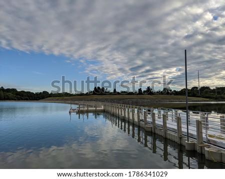 クマ 周りに 池 白 実例 ツリー ストックフォト © bluering