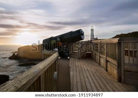 Observer on a Rocky Ocean Coast Stock photo © wildnerdpix