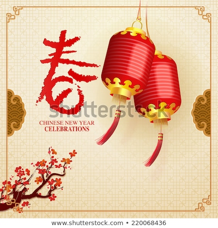 Chinese Lantern Cultural Decoration Vintage Vector Stock photo © pikepicture