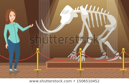 Teacher Showing Mammoth Skeleton in Museum Vector Stock photo © robuart