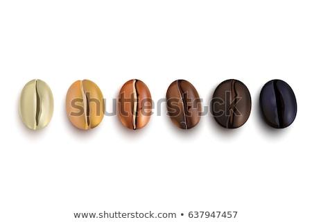 Ilustración colección granos de café vector tiza Foto stock © Sonya_illustrations