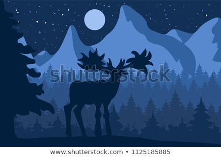 Elk in the night coniferous forest near the mountains Stock photo © barsrsind