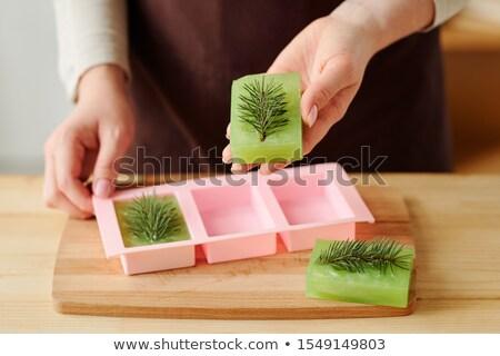 Handen meisje groene vers handgemaakt Stockfoto © pressmaster