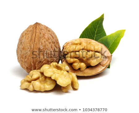 Walnut on white background Stock photo © hamik