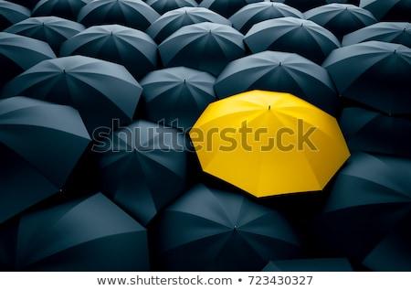 Egyéni kitűnik a tömegből tömeg üzlet ikon játék Stock fotó © Lightsource