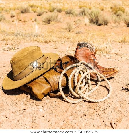 Cowboy hat, boots and revolver Stock photo © nickylarson974